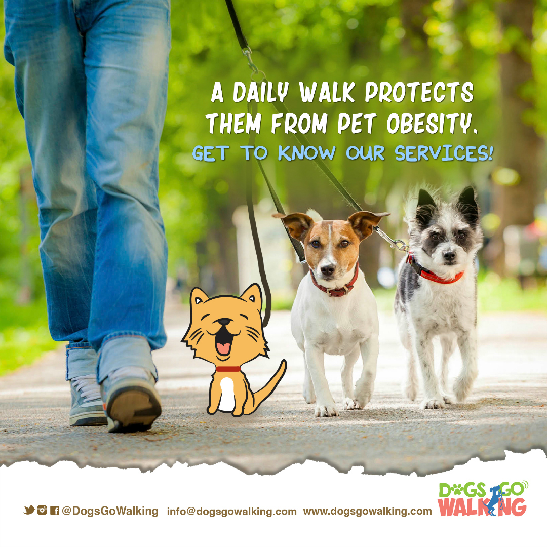 DGW National Pet Obesity Awareness Day redes